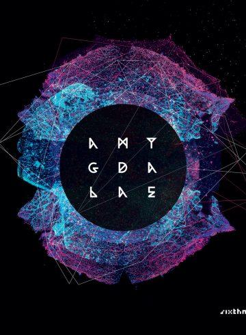 amygdalae_sixth_minor